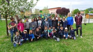 73 Kinder der VS Seiersberg legten mit ihren Pädagogen und Konrad Guggi eine Bienenwiese an.