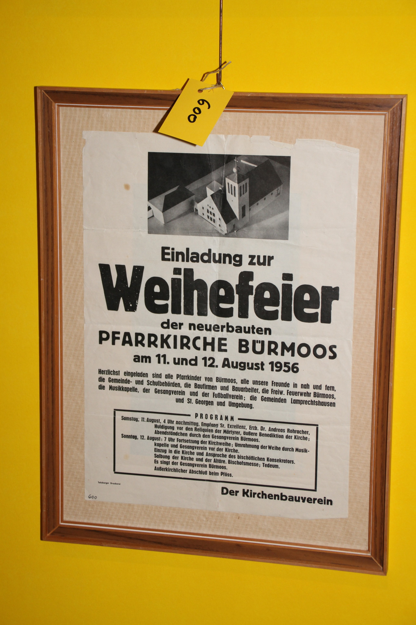 Irene Ritter-Veltmann aus Flachgau - blaklimos.com