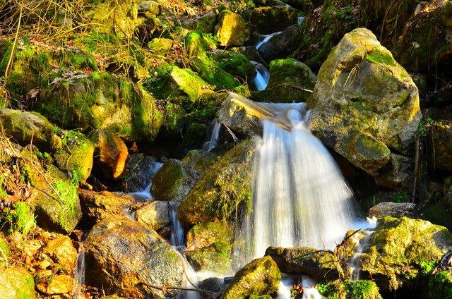 Der Streit um das Böhmerwaldwasser geht weiter. Die Gegner wehren sich gegen den Ausverkauf des Wassers, der Betreiber spricht von einer kleinen Menge.