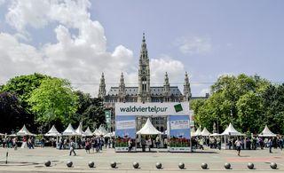 Das Waldviertel gastiert noch bis Freitag, 18. Mai, am Rathausplatz.