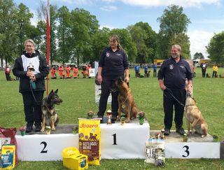 Internationalen Staatsmeisterschaft für Rettungshunde Leipheim: Die amtierende Weltmeisterin (Fährte) Christa Steinborn (Platz 2), Cara Tutschek mit Dakar (Platz 1), Peter Schüler mit Dora (Platz 3).