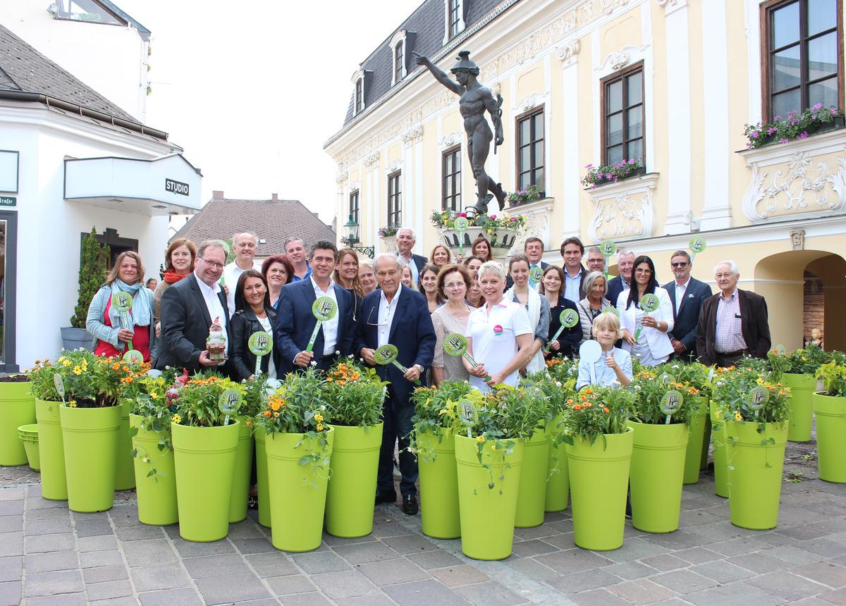 Green Art Blumentopfe Und Spezial Auslagen Fur Innenstadtbetriebe