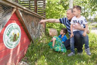 Landesrat Martin Eichtinger erkundet mit Amelie, Jonathan und Lorenz die Bienen in einem Nützlingshotel.