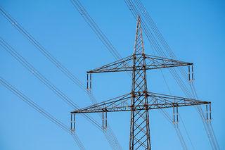 Weil eine Fichte auf die Stromleitung gestürzt war, wurde eine der drei Leitungen abgerissen und streifte die 56-Jährige am Kopf.