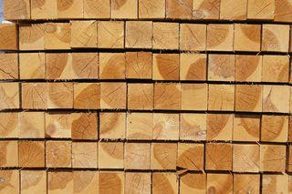 Bis zum 29. Juni können Projekte aus Holz eingereicht werden.