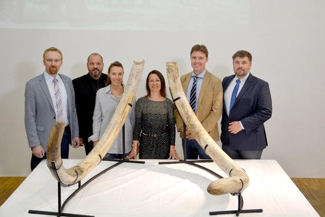 Peter Fritz, Mathias Harzhauser, Iris Fuchs, Ursula Göhlich, Christian Musil und Franz Pieler.