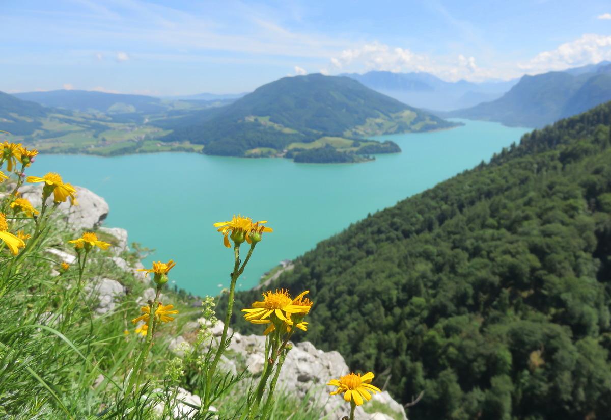 Klettersteig Mondsee : Ausblick vom drachenwand klettersteig zum mondsee flachgau