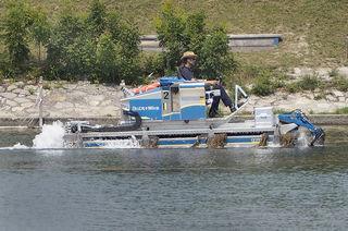 Ein Amphibien-Mähboot der Stadt Wien im Einsatz auf der Alten Donau.