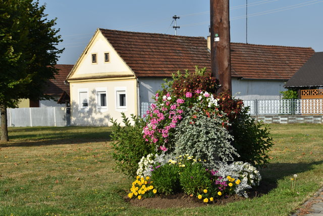 Achtmal gewann Steinfurt den Landes-Blumenbewerb in der Ortskategorie unter 500 Einwohnern. Diese Serie hat nun ein Ende.