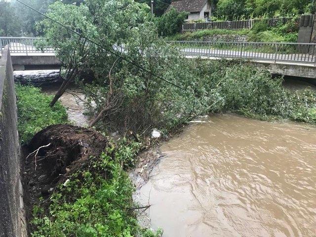 Die Gefahr der Verklausung ist nach dem Unwetter groß. Bäume stürzten auf Straßen und Dächer.