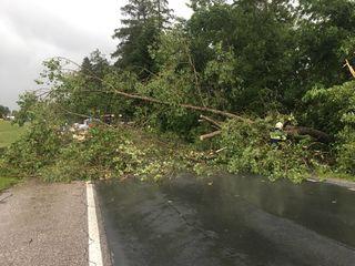 Nichts geht mehr. Bäume stürzten auf Straßen, aber leider auch auf Hausdächer.