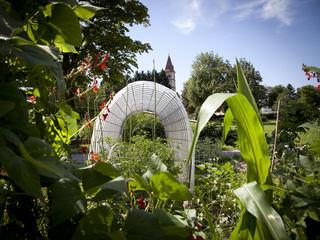 """Der Stadtteilgarten Itzling feiert sein Jubiläum mit einem bunten Fest im """"Itzlinger Park""""."""
