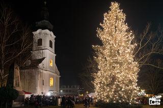 Die geschmückte Tanne vor der Kirche ist die Attraktion im adventlichen Jennersdorf. Sie weist allerdings unterhalb des Wipfels eine natürliche Sollbruchstelle auf.