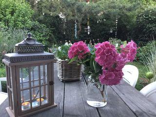 Der Gartentisch ist einladend dekoriert und Rasen und Hecken zeigen sich geschnitten und vom Unkraut befreit, ganz ungeniert. Einen schönen Start in die neue Woche wünscht Euch allen Hildegard