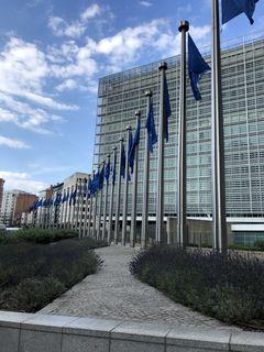 Die Fahnen vor der EU-Kommission in Brüssel symbolisieren die Zahl der Mitglieder. Die wird vor 2025 sicher nicht steigen.