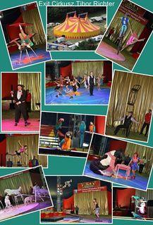 Foto: Robert Rieger Photography ...  Circus & Entertainment Pics by Robert Rieger