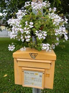 Mitten in Hagensdorf (Bez. Güssing) entdeckte ich gestern diesen mit Blumen geschmückten Post-Briefkasten