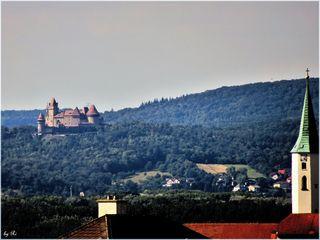 Am Abend bei lieben Freunden von deren Terrasse in Klosterneuburg aus über die Donau hinweg fotografiert! In weiter Ferne die Burg Kreuzenstein, vorne rechts der Kirchturm von St.Martin/Klosterneuburg
