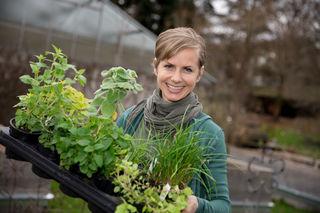 Bio-Gartenexpertin Angelika Ertl-Marko gibt Tipps zum Trocknen von Kräutern und zur Herstellung von Teemischungen.
