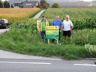 Die Landwirte Moser, Schober und Berner haben bewusst Blühstreifen gepflanzt – für das Wohl der Bienen, aber auch für mehr Verkehrssicherkeit.