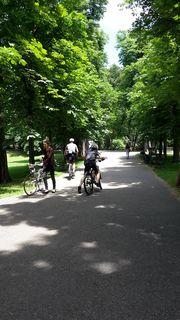 Radfahren im Park ist in Graz  verboten. (Symbolbild)
