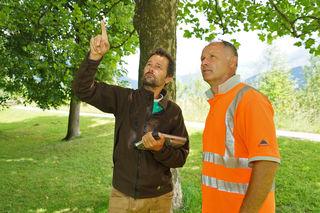 700 Bäume werden in St. Johann vom Maschinenring erfasst und überprüft.
