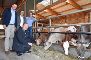 LHStv Josef Geisler (vorne) freut sich gemeinsam mit v.li. Michael Wurzrainer, Thomas Danzl und Hannes Post über das neue Qualitätsfleischprogramm.