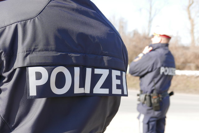 Der 44-Jährige wurde in das Polizeianhaltezentrum nach Linz gebracht.