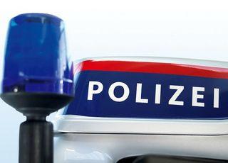 Ein Mann randalierte, ein 19-Jähriger mischte sich bei der Polizei ein: Handschellen klickten