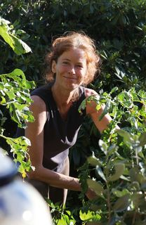 Christine Rottenbacher
