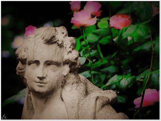 Die Rose spricht alle Sprachen der Welt.  Ralph Waldo Emerson (1803 - 1882)