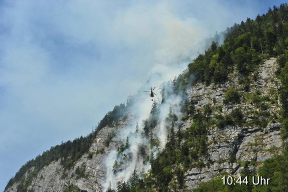 Klettersteig Hallstatt : Waldbrand am klettersteig in hallstatt salzkammergut