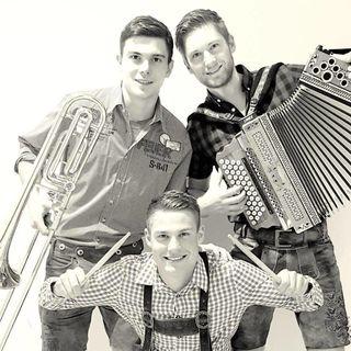 Thomas Reinsperger, Johannes Reinsperger und Christoph Rud sind zusammen das Lurnfeld Trio