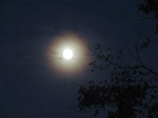 23.08.2018 20:24 Mond mit Halo