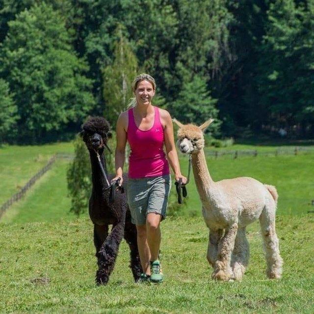 Single kennenlernen pttsching: Datingseite in wullersdorf