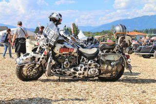 Harley Davidson in Faak am See, Kärnten, European Bike Week 2018, Austria
