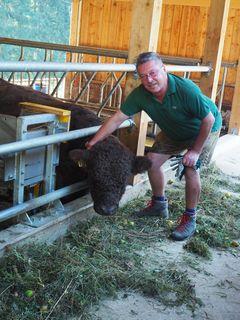 Ranger Sigi Jäger mit einer der Rinder.