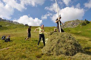 Eine Sommerwoche lang halfen elf junge von der Natur begeisterte Menschen aus Österreich, Deutschland und Ungarn auf einer Umweltbaustelle im Zederhauser Naturpark Riedingtal im Rahmen eines Beweidungsprojektes mit.