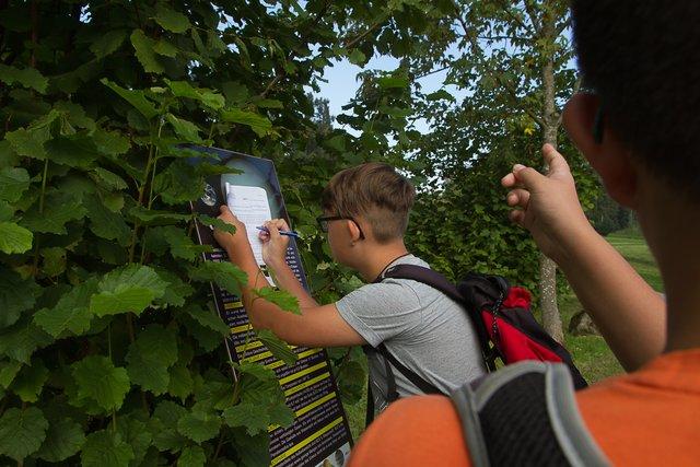 Schulprojekt in Peuerbach: Mit Kometor, Astroweg und Co. die