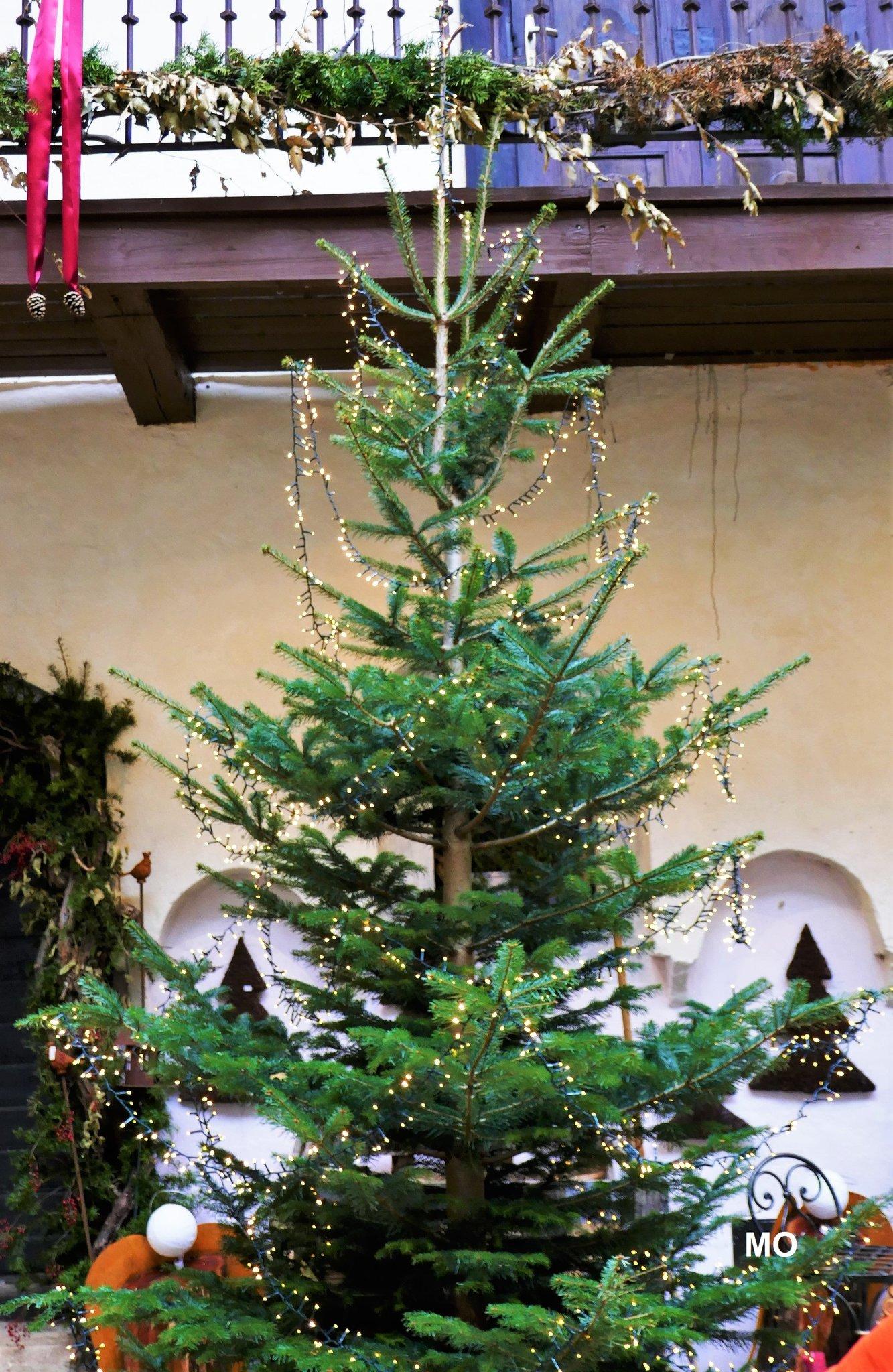 Schloss Burgau Weihnachtsausstellung Hartberg Furstenfeld