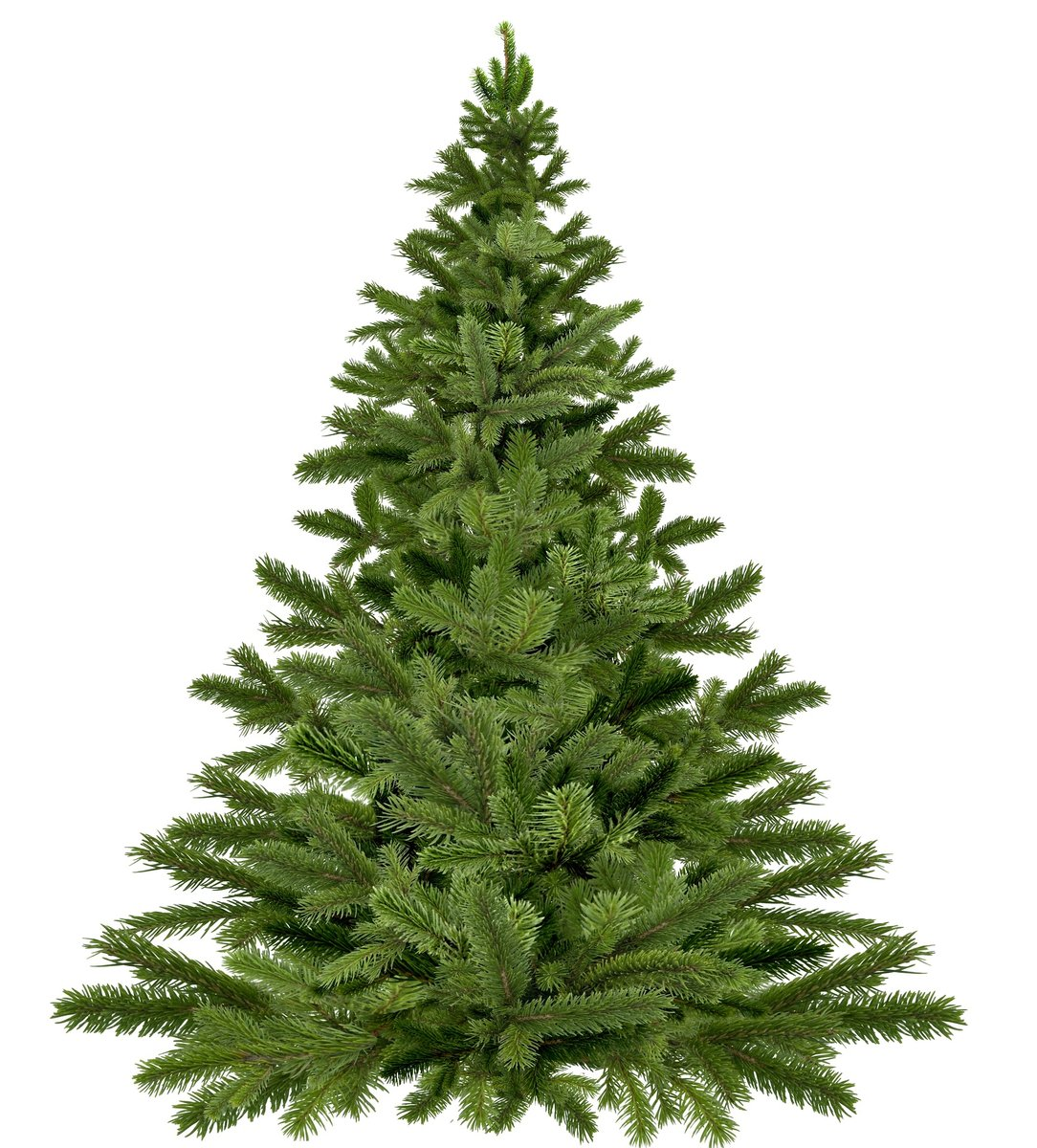 Wien Weihnachtsbaum Kaufen.Christbaumverkauf Thema Auf Meinbezirk At
