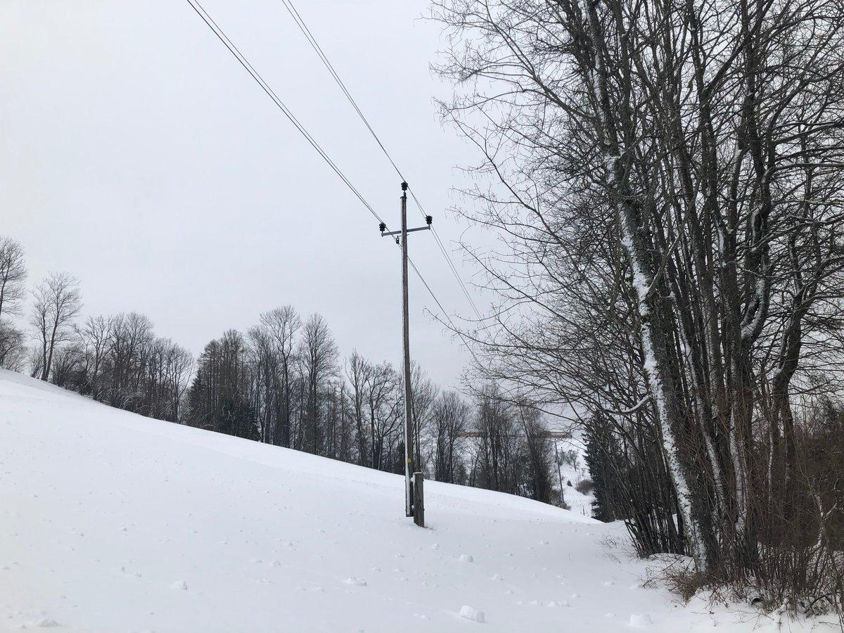 Hoher Schneedruck Stromstörungen Im Versorgungsgebiet Der Linz Ag