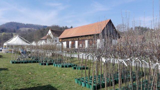 Veranstaltungen in Kaindorf - Leibnitz - blaklimos.com