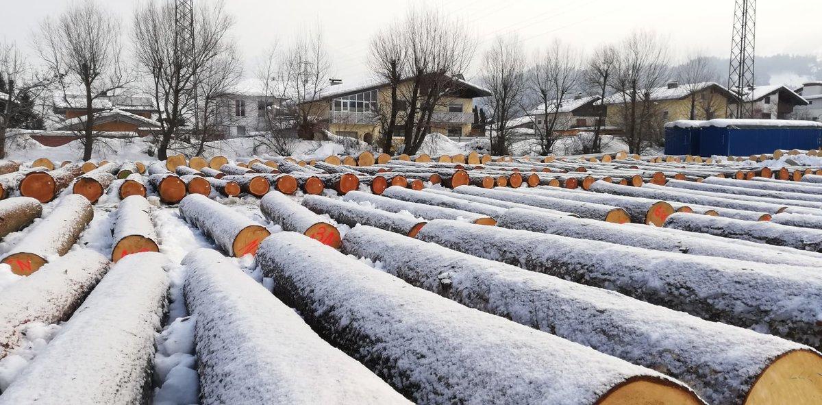 Atemberaubend Holzpreise - Thema auf meinbezirk.at #FG_49