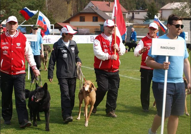 Hundesportverein Güstrow