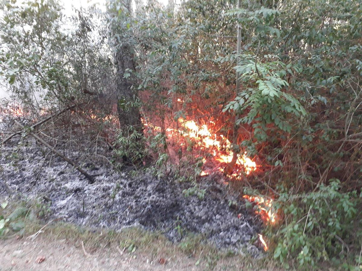 Waldbrände Alaska Karte.Waldbrand Fünf Feuerwehren Wurden Alarmiert Neunkirchen