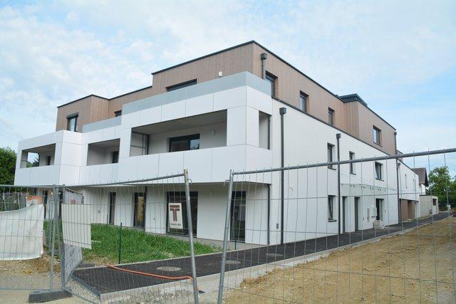 Nachrichten aus dem Bezirk Scheibbs in Niedersterreich