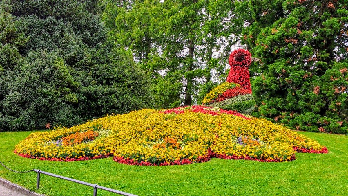 Insel Mainau Karte.Blumeninsel Mainau Besuch Der Herrlichen Insel Mainau Tennengau