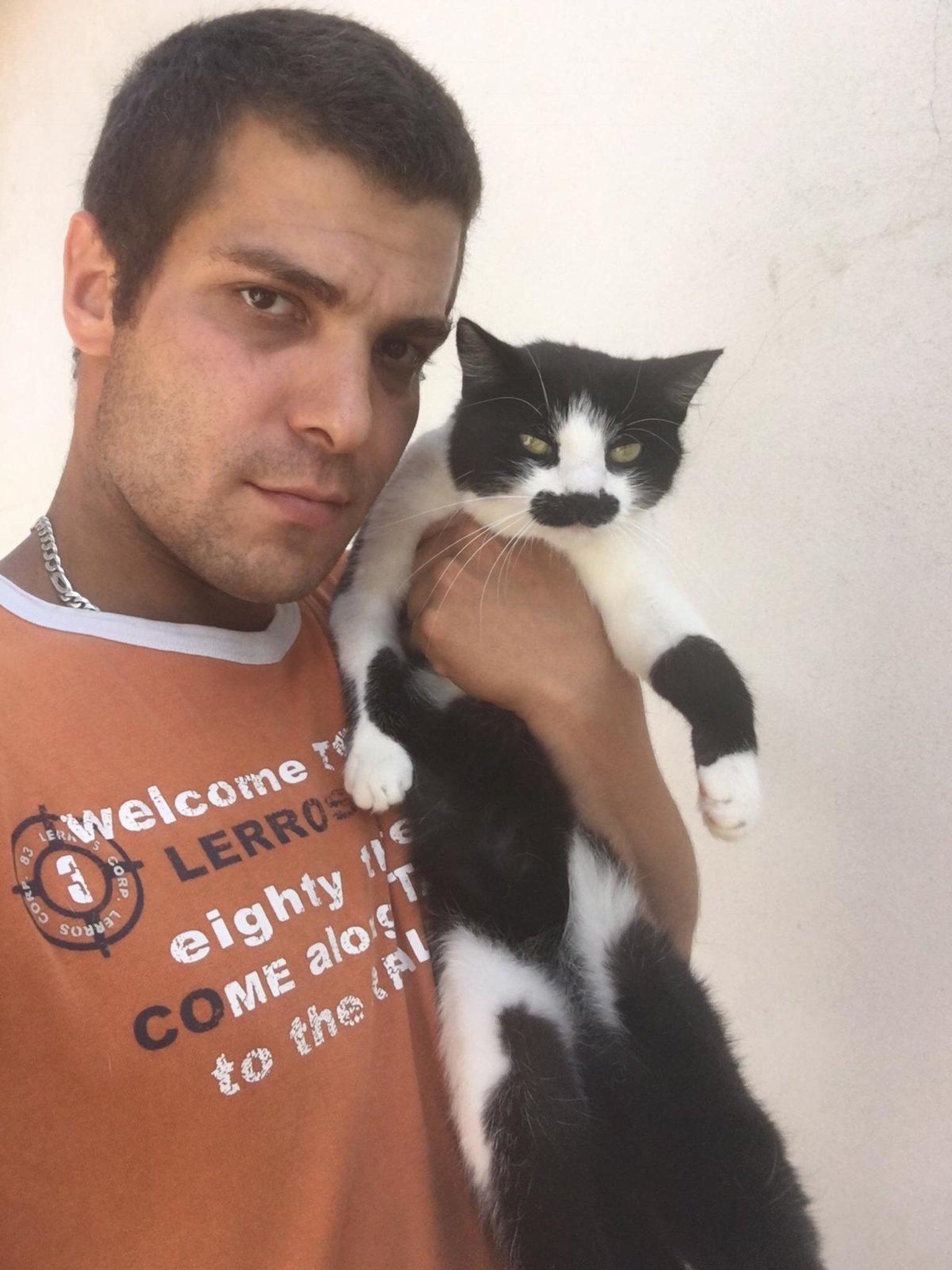 Drama: Michael trauert um seine Katze - Mistelbach