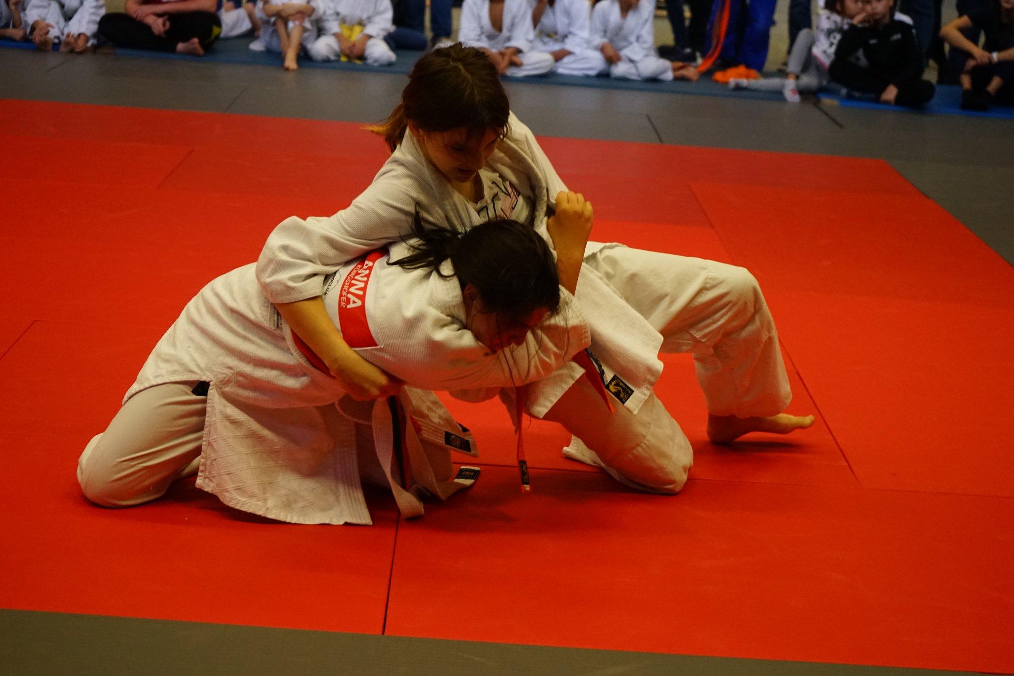 Judoverein Jennersdorf veranstaltete: Großer Judo-Tag für Nachwuchs - Jennersdorf - meinbezirk.at